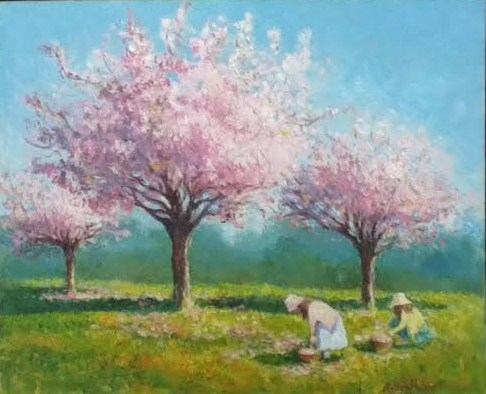Gathering Cherry Blossoms, 8 X 10 (Oil)