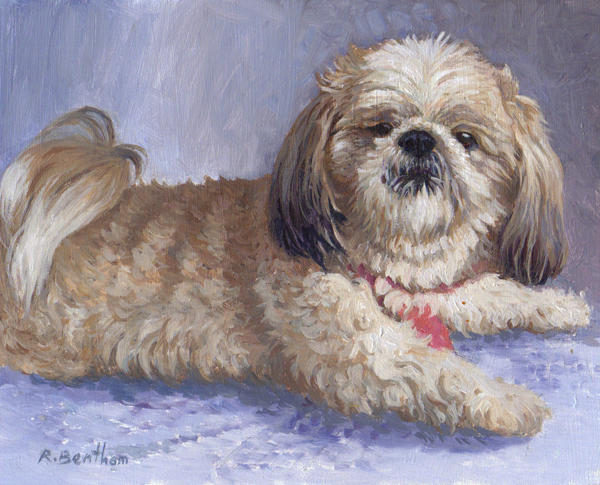 Molly, 8 X 10 (Oil) - Sold
